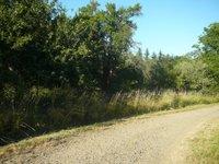 Prodej pozemku v lokalitě Svinošice, okres Blansko - obrázek č. 2
