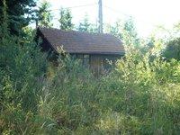 Prodej pozemku v lokalitě Svinošice, okres Blansko - obrázek č. 5