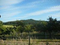 Prodej pozemku v lokalitě Svinošice, okres Blansko - obrázek č. 3