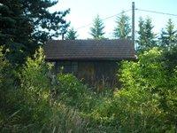 Prodej pozemku v lokalitě Svinošice, okres Blansko - obrázek č. 4