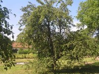 Prodej pozemku v lokalitě Bedřichov, okres Blansko - obrázek č. 4