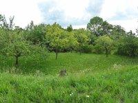 Prodej pozemku v lokalitě Židlochovice, okres Brno-venkov - obrázek č. 4