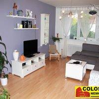 Velmi osobní, příkladný a profesionální přístup při koupi nemovitosti. - obrázek č. 1