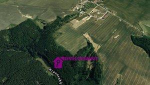 Prodej, Lesy, 4349m² - Krasová