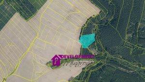 Prodej, Lesy, 8575m² - Dobřejice