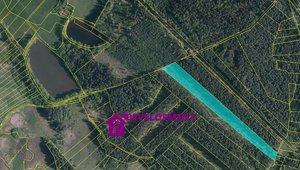 Prodej, Lesy,  20 921 m² - Jílovice u Trhových Svinů