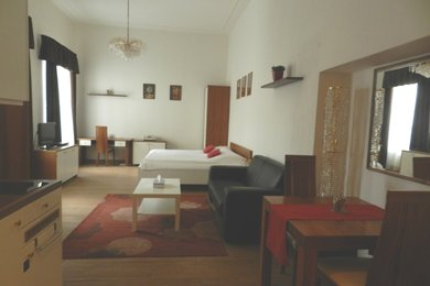 Krátkodobý pronájem kompletně zařízeného bytu 1+kk, Brno, Cejl, Ev.č.: DR2B 222RP