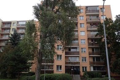 Prodej OV 1+kk s lodžií, v revitalizovaném domě na ul. Uzbecká, Brno - Bohunice, Ev.č.: DR1B 10279R