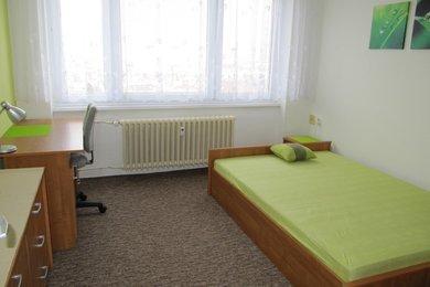 Pronájem zařízeného bytu 1+kk v cihlovém domě, ul. Kneslova, Brno - Černovice, Ev.č.: DR2B 10211R