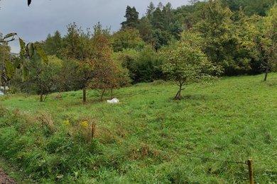 Prodej, Pozemky - zahrady, 1800m² - Bílovice nad Svitavou, Ev.č.: 00078