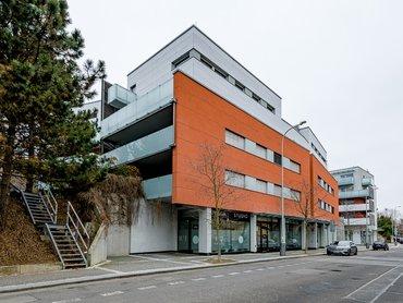 Pronájem velkorysého bytu 4+kk /125m²/ s terasou a zahradou, Praha 6 - Dejvice