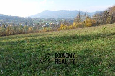 Prodej, pozemky pro bydlení, 3000 m² - Ostravice, Ev.č.: 00101