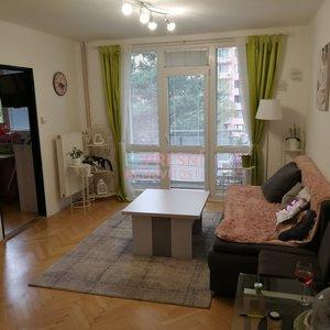 Pronájem, Byty 2+1 s balkonem, 54m², u polikliniky Jih - České Budějovice 7