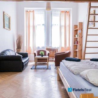 Pronájem bytu 1+1, 43m² - Praha - Žižkov (Vlkova)