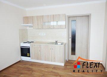 Pronájem prostorného bytu 1+1 s lodžií, 48m2, Moravská Ostrava a Přívoz, ul. Hrušovská