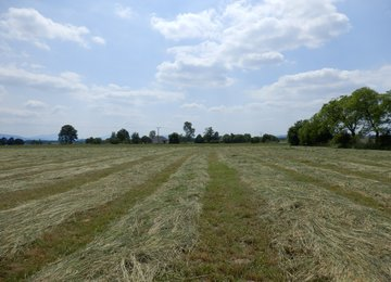 Prodej stavebního pozemku o rozloze 1612 m2, obec Lučina