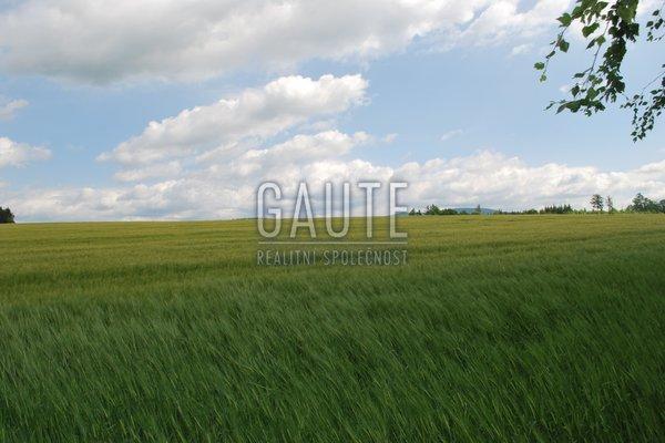 Prodej, Zemědělská půda, 11658m²