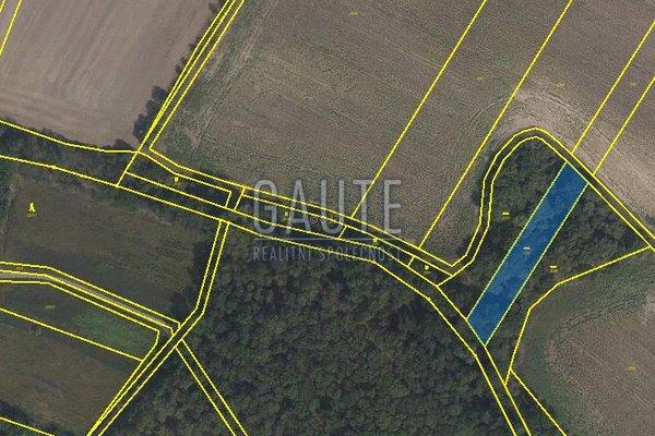Prodej, Ostatní pozemky, 2001m²