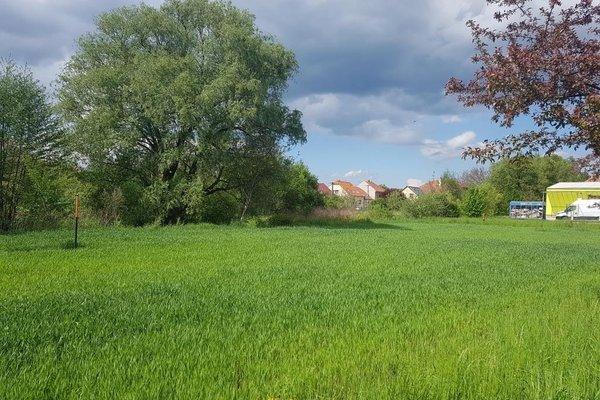 Prodej, Pozemky - zahrady, 431m²