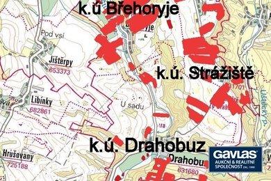 Polabí - 111,56 ha   zemědělské půdy v obci Drahobuz, Ev.č.: P11119-1