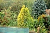 16 zahrada za domem