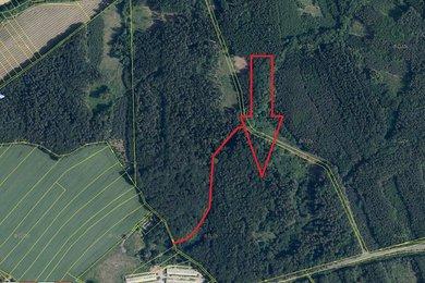 Lesní pozemek 152 592 m2 Štíhlice, Praha - východ - Štíhlice, Ev.č.: VŘ 1-12-20