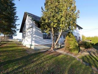 Prodej rodinného domu 6+1, 2190 m² - Dlouhoňovice, okr. Ústí nad Orlicí
