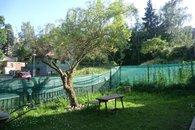 5.zahrada