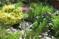 Zahrada 1a