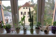 POhled z okna 1b