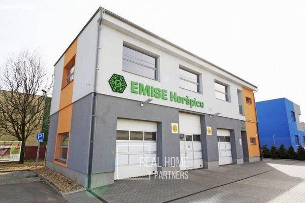 Pronájem kancelářských prostor, CP 160 m2, Brno – Horní Heršpice