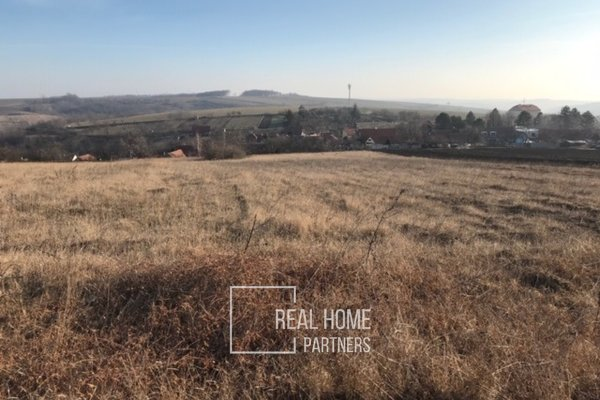 Prodej pozemku na bydlení v obci Borkovany, 2791 m2