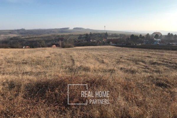 Prodej pozemku na bydlení v obci Borkovany, 4380 m2