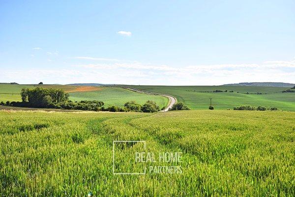 Prodej zemědělské půdy/pole, 2591 m² - Koryčany - Jestřabice