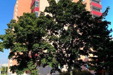 Prodej bytu 4+1, CP 79,7 m2 + 4 m2 lodžie, Josefy Faimonové, Brno - Líšeň, Ev.č.: 00198