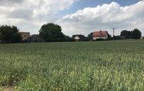Prodej, parcely určené k výstavbě, 8311 m², Ostrava Stará Bělá