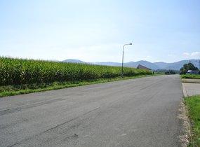 Prodej komerčního pozemku v obci Horní Tošanovice