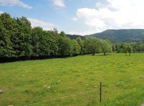 Prodej, Pozemky pro bydlení, 1290m² - Morávka
