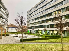 Pronájem reprezentativní kanceláře v centru (207,08 m²)