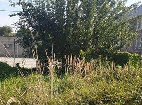 Pronájem, Pozemky - zahrady, 264m² - Ostrava