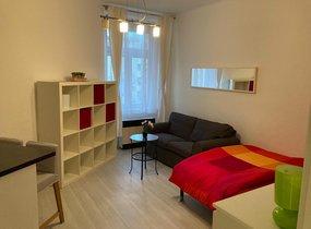 Pronájem nově zrekonstruovaného bytu 1+kk, 29m² - Praha 10 - Vršovice