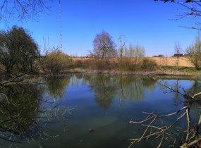 Prodej, rybníku (vodní plochy) Krásensko, 12045 m2
