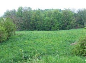 Prodej, Pozemky pro bydlení, 5 169m²