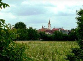Prodej, Pozemky, Orná půda, 1241 m², Vranovice nad Svratkou