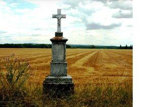 Prodej, Pozemky, Orná půda, 2575 m², Vranovice nad Svratkou