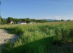 Prodej, Pozemky pro bydlení, 1423m²