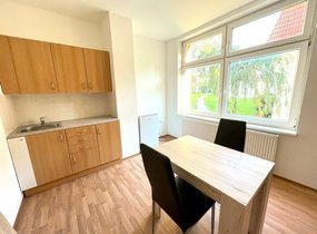 Pronájem bytu 1+kk, 23m² - Brno - Židenice