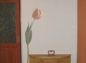 hala tulip