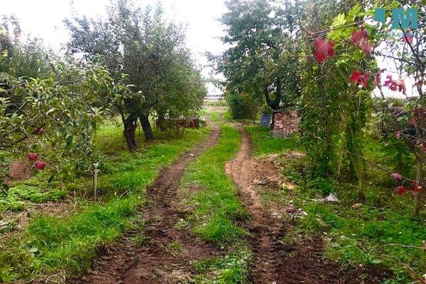 Prodej, Pozemky pro bydlení, 2000m² - Znojmo - Oblekovice