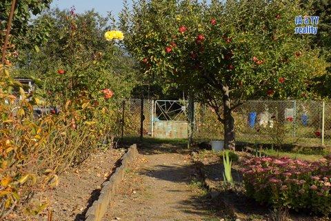 zahrada002